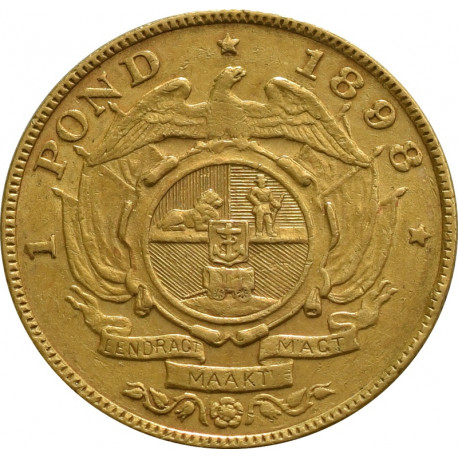 South African 1 Pond Gold Coin - peninsulahcap